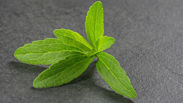 healthy-Sweeteners-Stevia