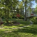Arboricultural Impact Assessments