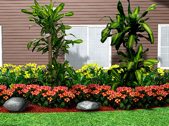 Popular Landscaping Plants: Create a Front Yard That Will ...