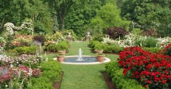 Maintaining the Garden of Dreams