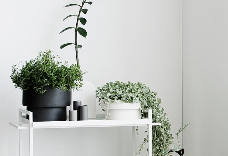 wholesale pots 4