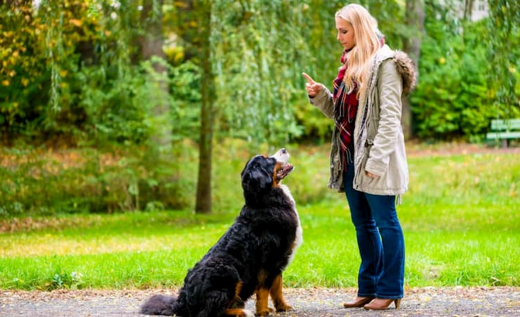 women with black dog that is barking