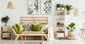Living room ideas with plant